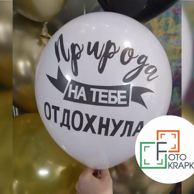 Шарик природа на тебе отдохнула Харьков