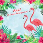 фламинго фотозона Украина