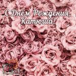 фотозоны в цветах для взрослых розы